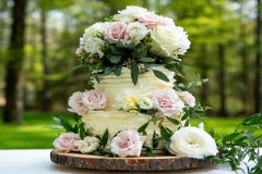 baked-by-susan-wedding-cakes-slide-1